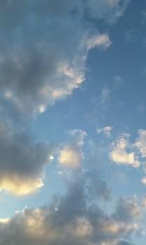 秋の空~もう直ぐ日が暮れます!.jpg